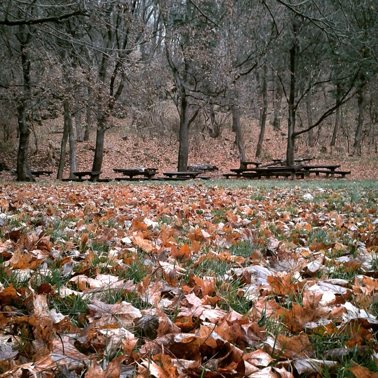Füredi ősz