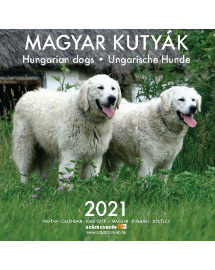 Magyar kutyák falinaptár 2021 Cartographia 5999550448958