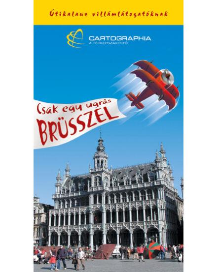 Cartographia  - Brüsszel villámkalauz